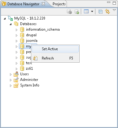Creating and Managing Database Connections with DBeaver